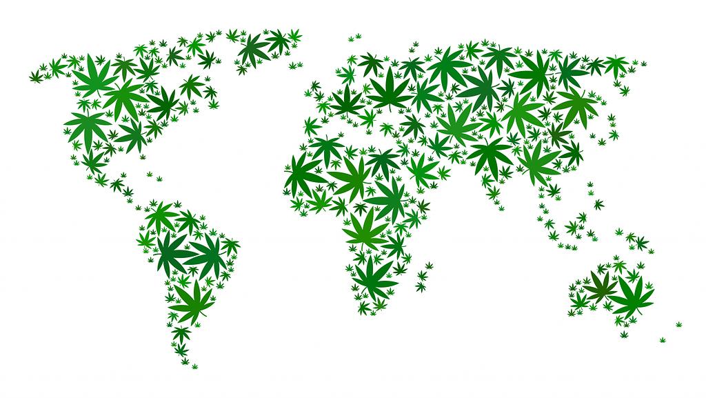 Cannabis Distribution